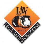 LAV1-e1449039594597